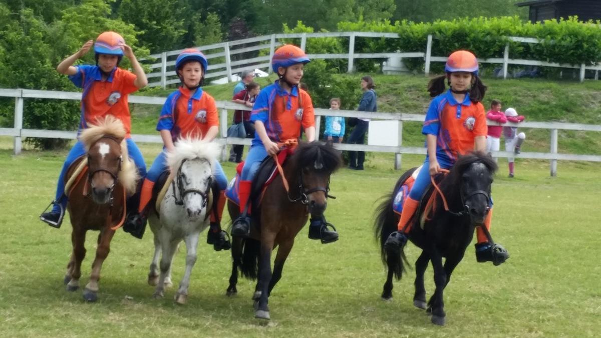 pony-shetland-gara