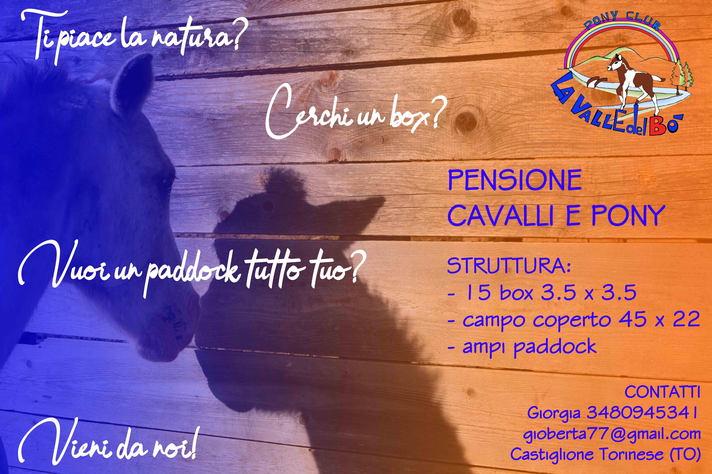 2019_Annunci-pensione-cavalli_02