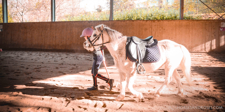 lezione-pony--cavalli-torino