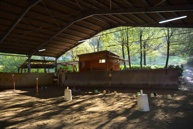 2019_Scuola-di-equitazione_02_campo