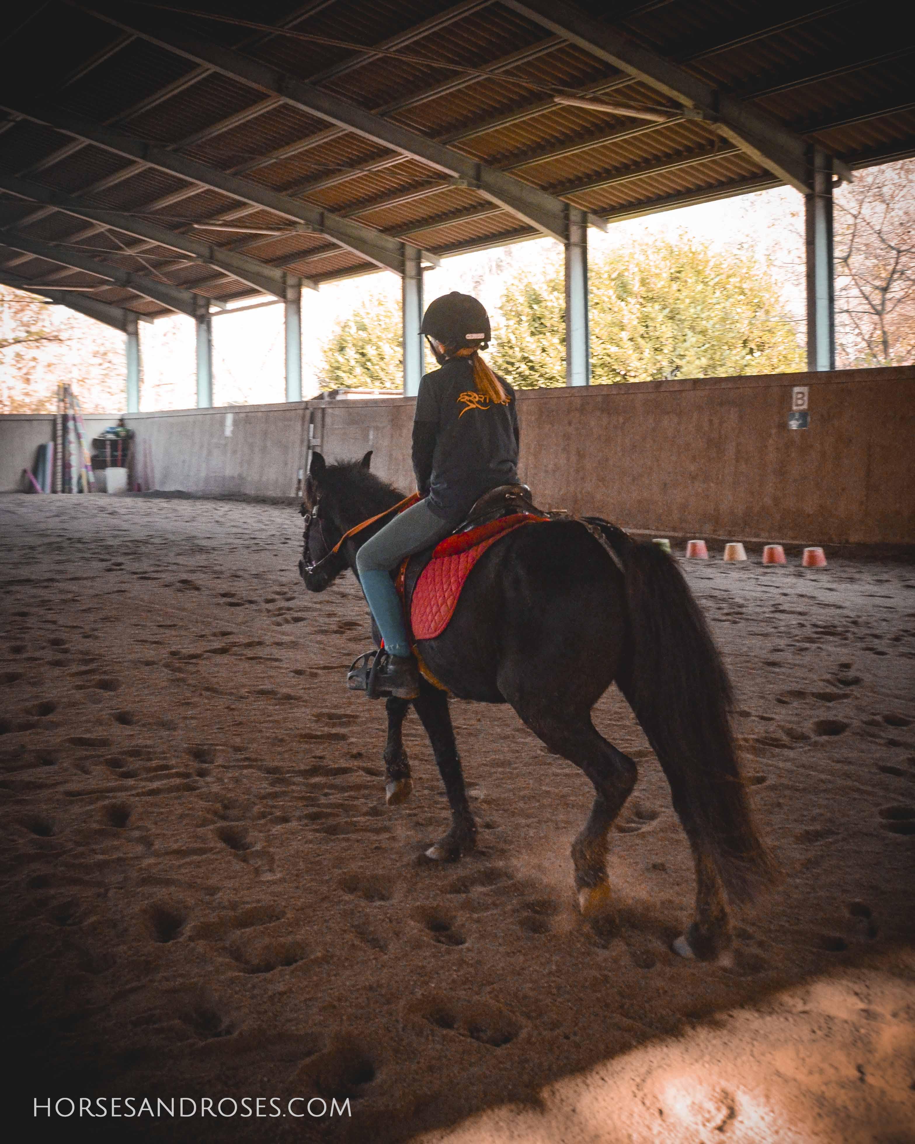 2019_Scuola-di-equitazione_13_lezione