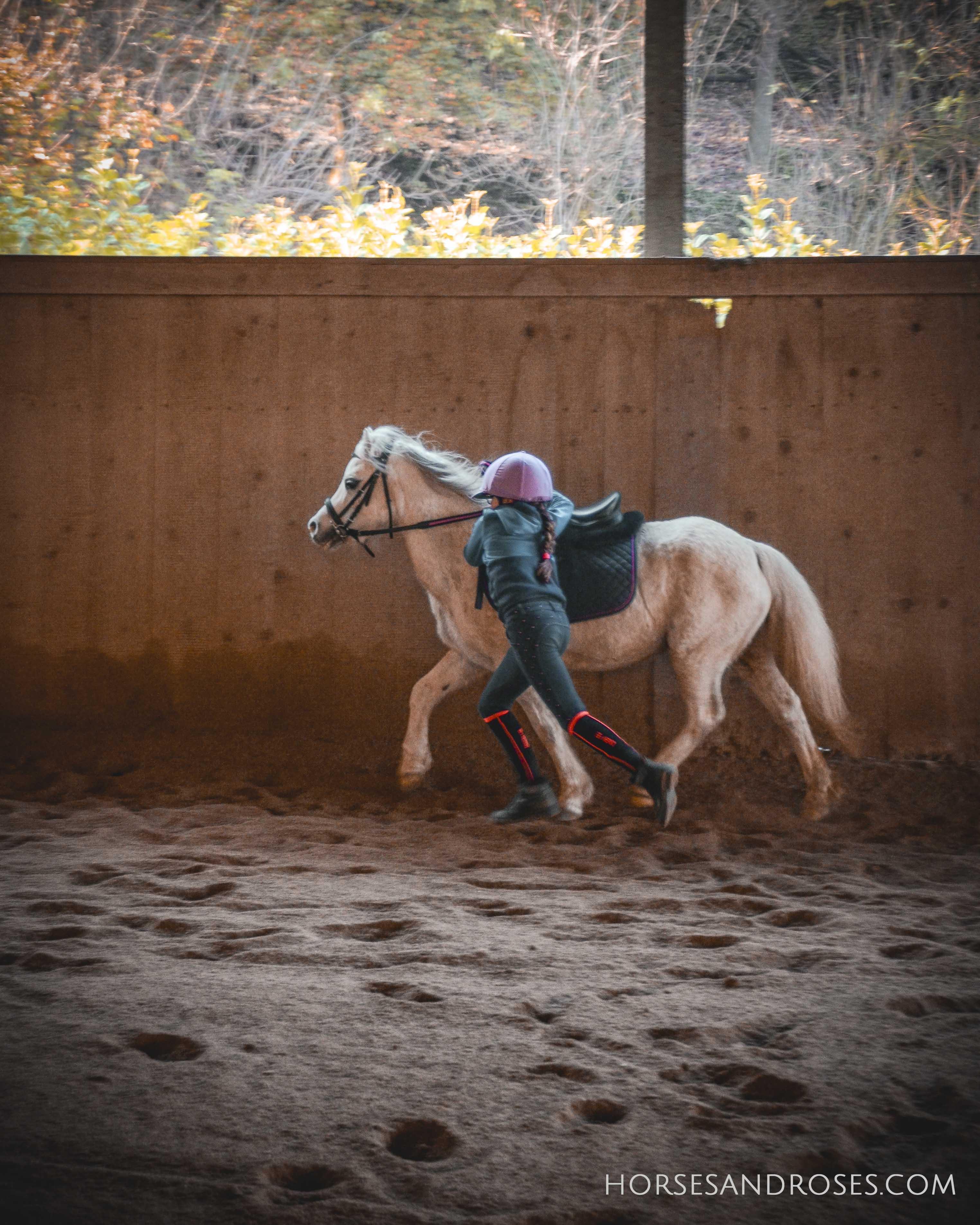2019_Scuola-di-equitazione_14_lezione