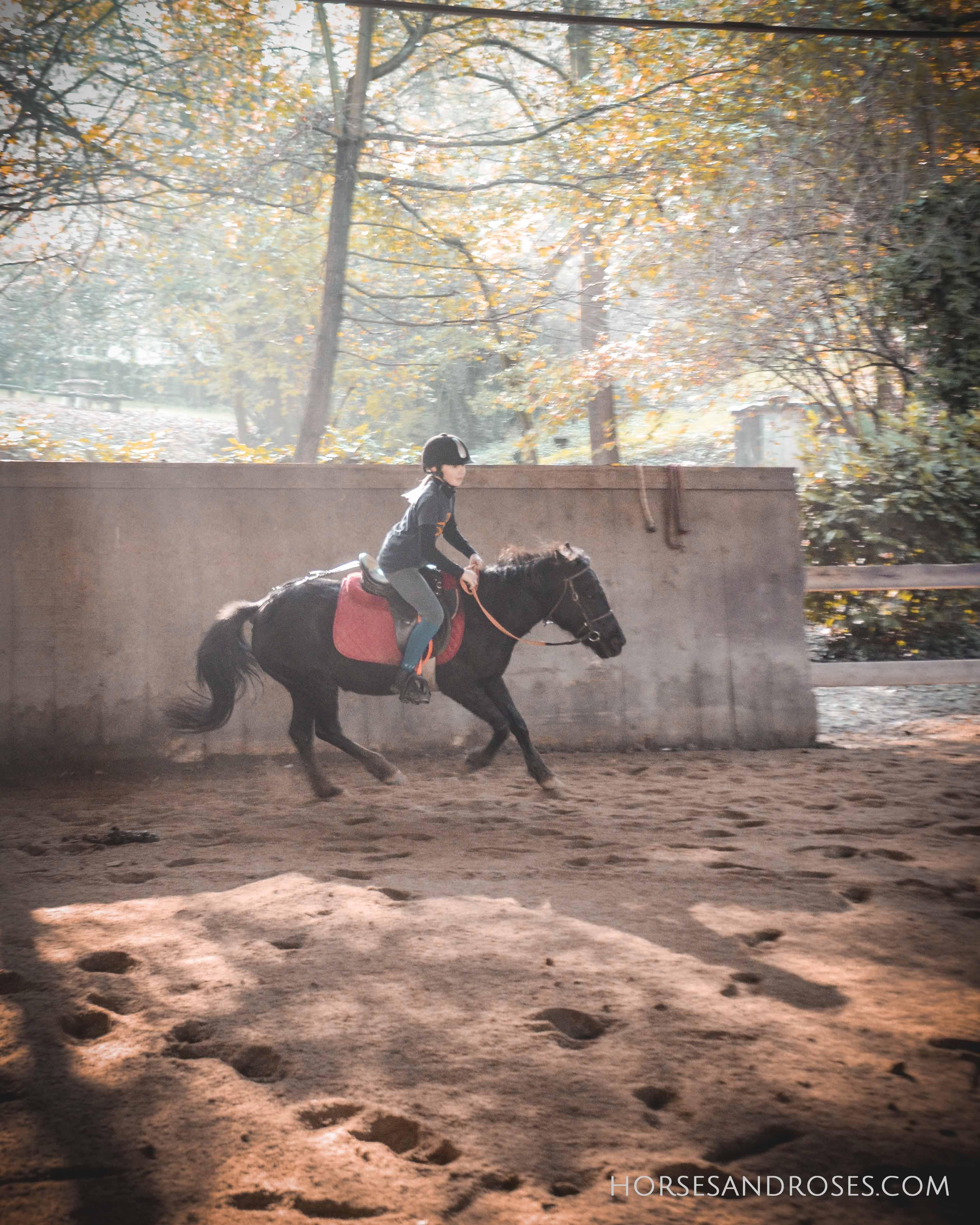 2019_Scuola-di-equitazione_15_lezione
