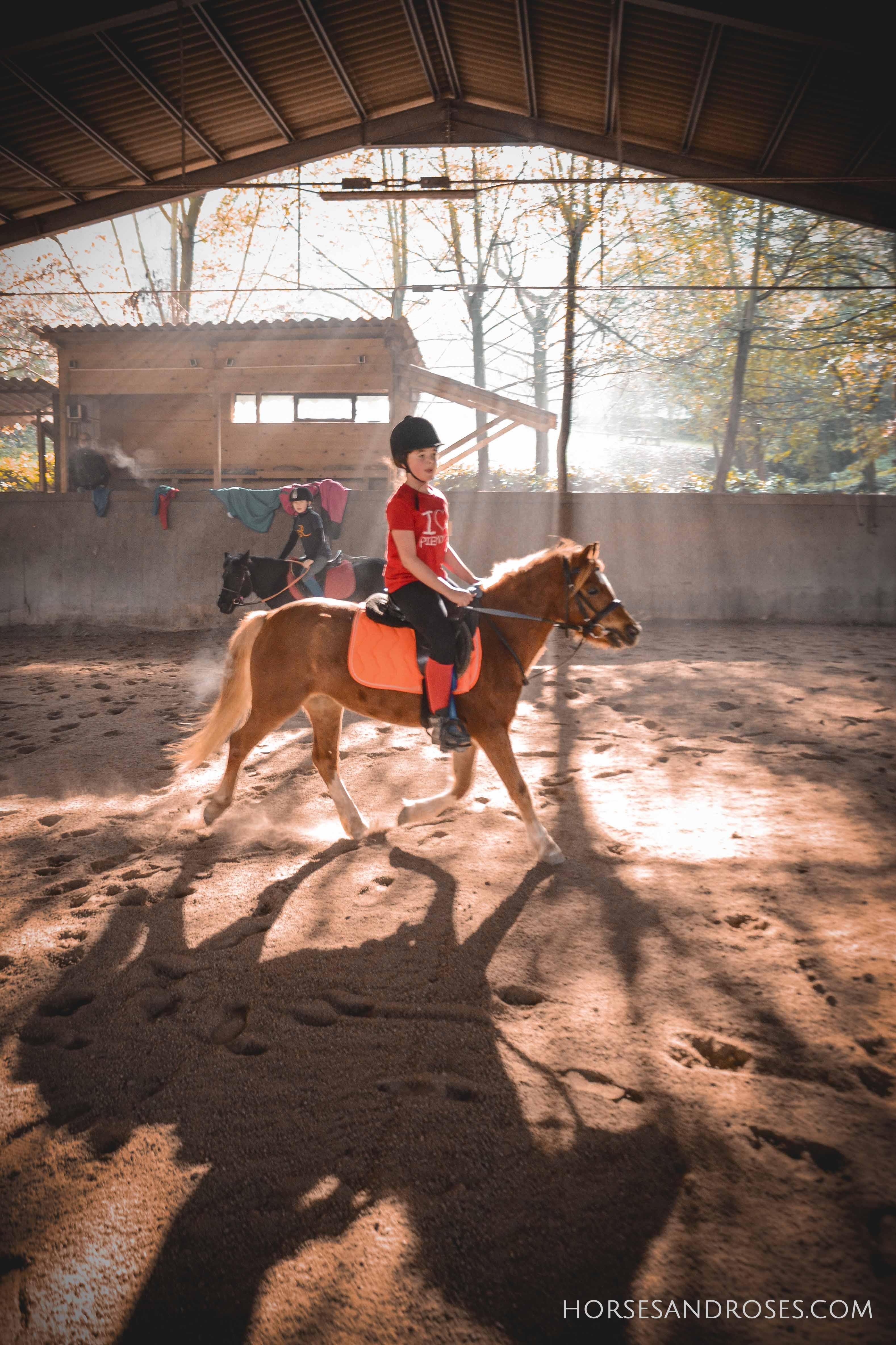 2019_Scuola-di-equitazione_16_lezione