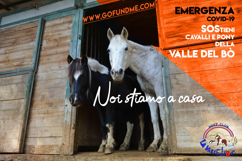 2020_emergenza-covid-19-valle-del-bò-02