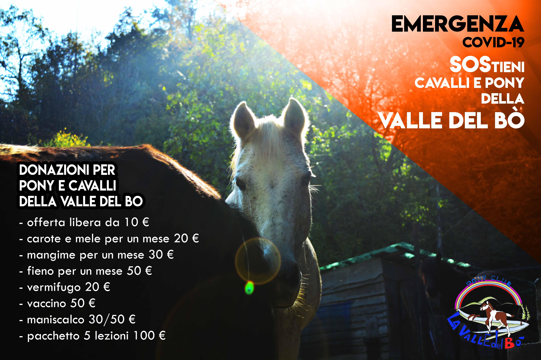 2020_emergenza-covid-19-valle-del-bò-03