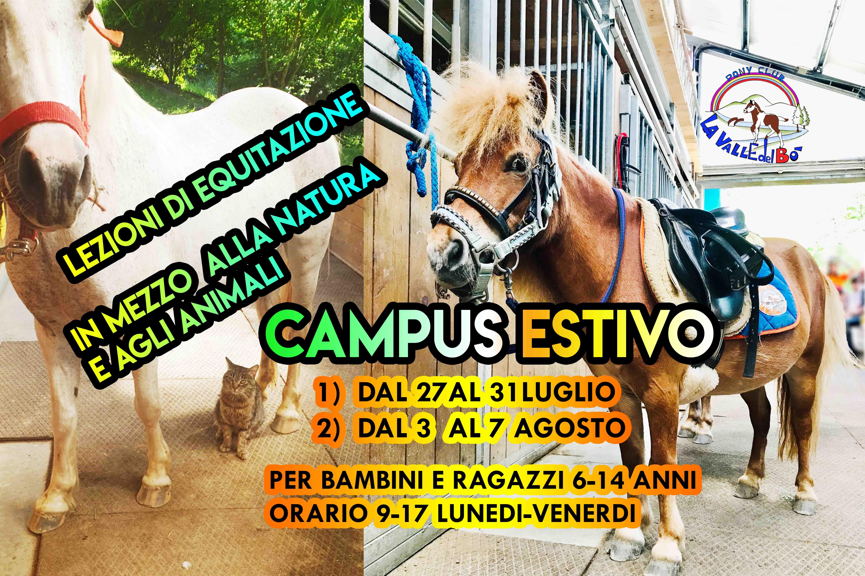 CAMPUS-ESTIVO_01_2020-07-21