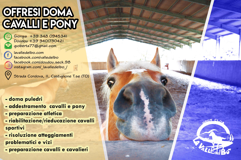 doma-cavalli_02_2020-06-23